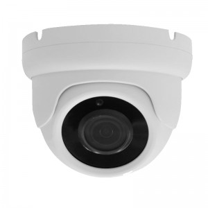HD-IP 5MP 2.7-13.5mm 24IR POE Indoor Dome Camera (54s01g)